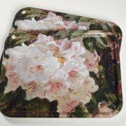 Stor bakke | Rhododendron