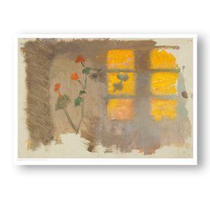 Solstrejf på en væg. Pelargonier