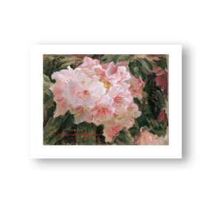 Blomstrende rhododendron