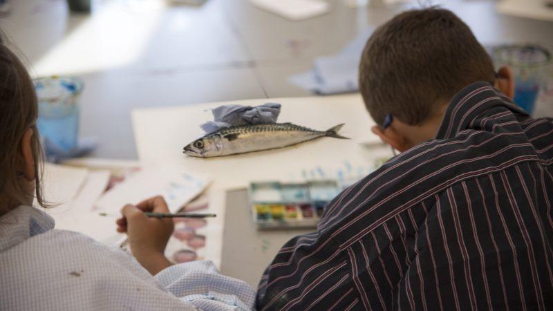 I ferien er der malerskole for børn i alderen 7-14 år på Skagens Musem. Dagens tema er Friske Fisk.