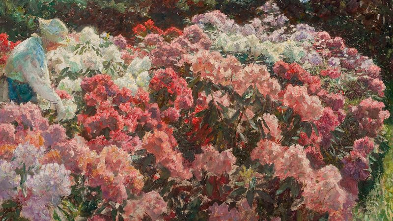 The painting 'Rhododendron in Tuxen's garden'